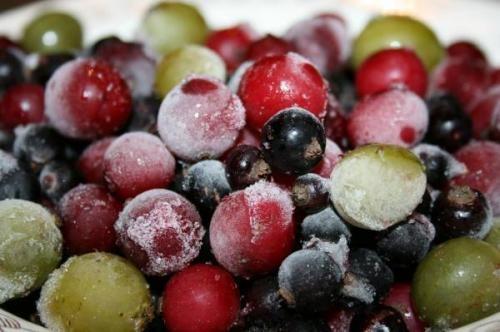 Как хранить фрукты в морозильнике