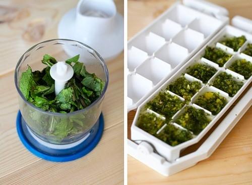 Как хранить зелень в морозильнике