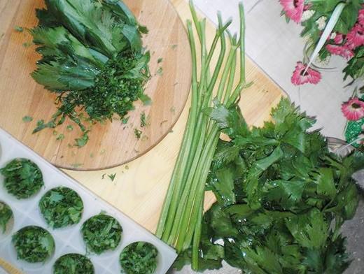 Как хранить листья салата в морозильнике