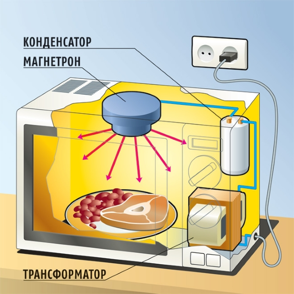 Из чего состоит микроволновая печь